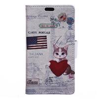 Emotive PU kožené pouzdro na Huawei Nova - US kočička