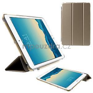 Classic tří polohové pouzdro na iPad Mini 3, ipad Mini 2 a na iPad Mini - champagne - 1